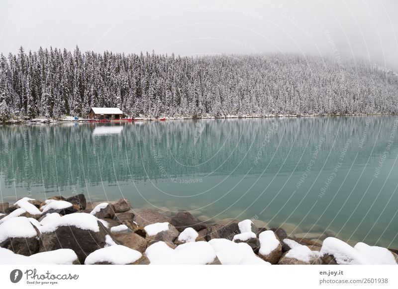 Paddle weather? Vacation & Travel Tourism Trip Adventure Winter Snow Winter vacation Nature Landscape Fog Forest Rock Lakeside Lake Louise Hut Boathouse Rowboat