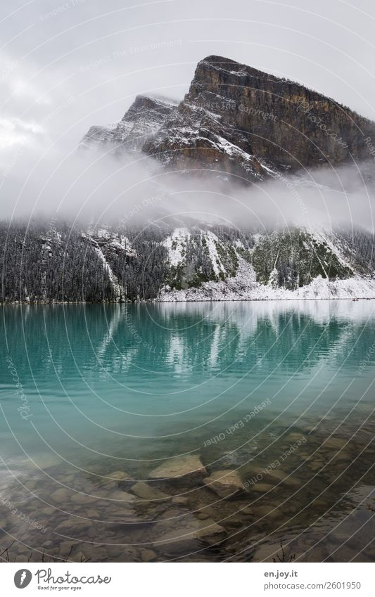 turquoise Vacation & Travel Trip Winter vacation Mountain Nature Landscape Elements Fog Rock Rocky Mountains Lake Lake Louise Turquoise Adventure Loneliness