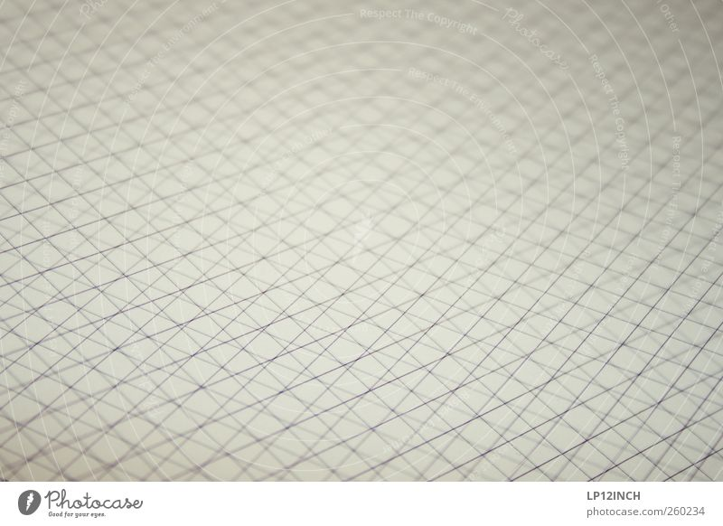 Gray Wood Line Stripe Paper Square Muddled Sharp-edged Checkered Lessons Cross Mathematics Education Science & Research