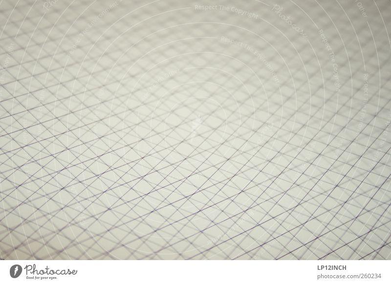 Oh Carolina Wood Stripe Sharp-edged Gray Paper Mathematics Checkered Cross Muddled Lessons Line Square Colour photo Interior shot Deserted Copy Space left
