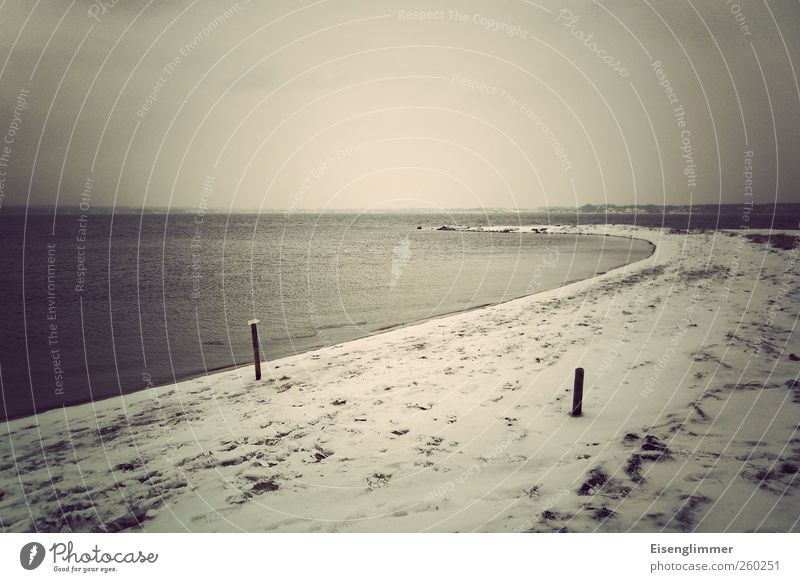 Holnis Landscape Water Winter Bad weather Ice Frost Snow Beach Bay Baltic Sea Ocean Threat Dark Weather Calm Horizon Colour photo Subdued colour Exterior shot
