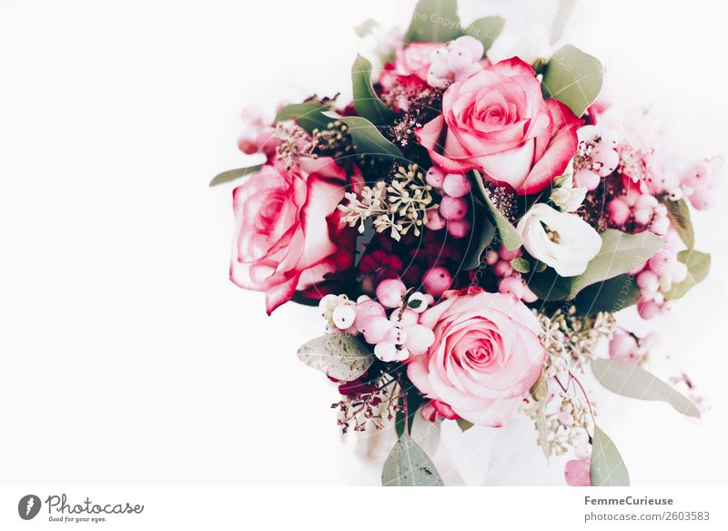 Extract bridal bouquet from above Plant Love Bouquet Flower Wedding Decoration Rose Pink Colour photo Interior shot Studio shot Copy Space left Copy Space top