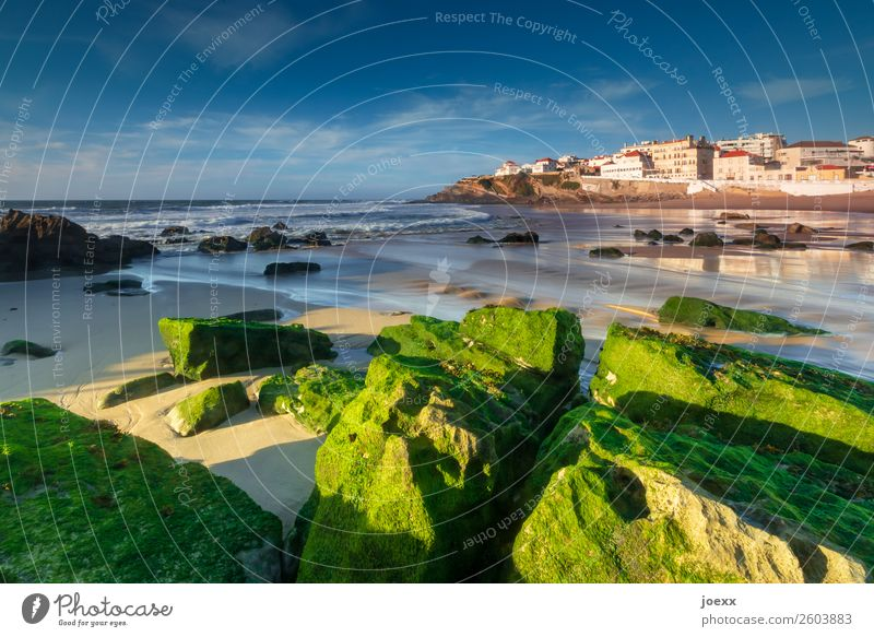 Green rocks with algae on the Atlantic beach with fishing village in the background Vacation & Travel Beach Ocean Rock Portugal Sky Sunlight Summer
