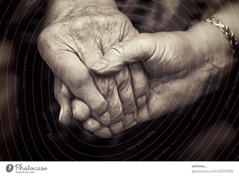 Connectedness, two seniors holding hands Hand age Couple Partner Senior citizen Human being Life Old Touch Together Emotions Contentment Trust