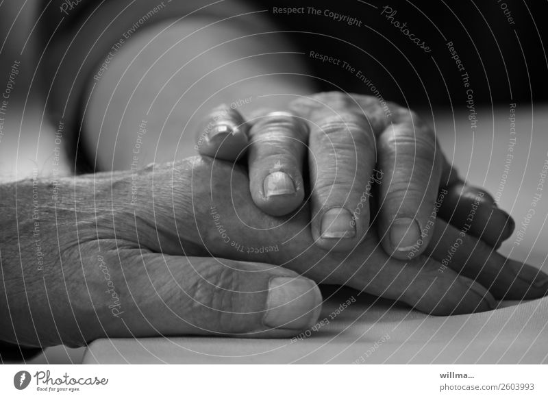 Old Hand Life Senior citizen Couple Touch Trust Safety (feeling of) Partner Sympathy Agreed