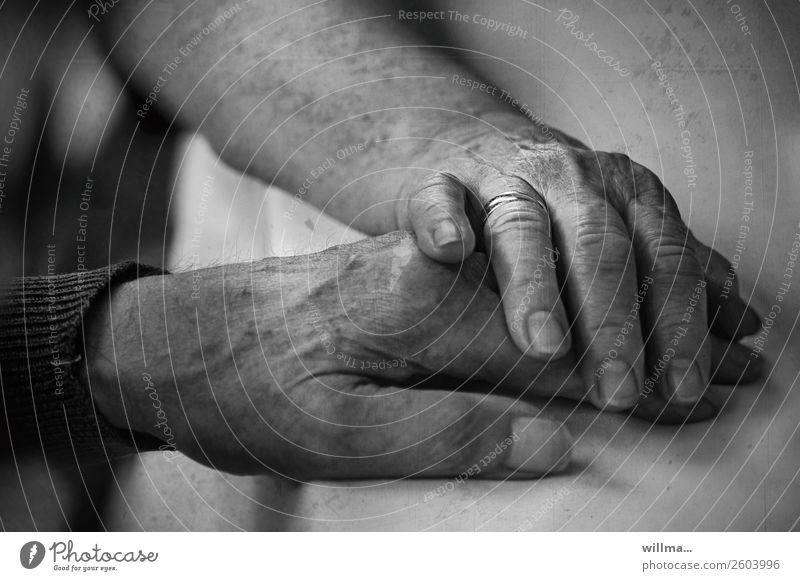 Senior lays her hand on her husband's hand with confidence Hand 2 hands age Couple Partner Senior citizen Human being Old Life 60 years and older Touch Emotions