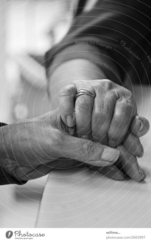 senior citizens comfortingly squeeze the hand of their husband - cohesion Hand Couple Partner age Touch Wedding band To hold on Human being Old Emotions Trust