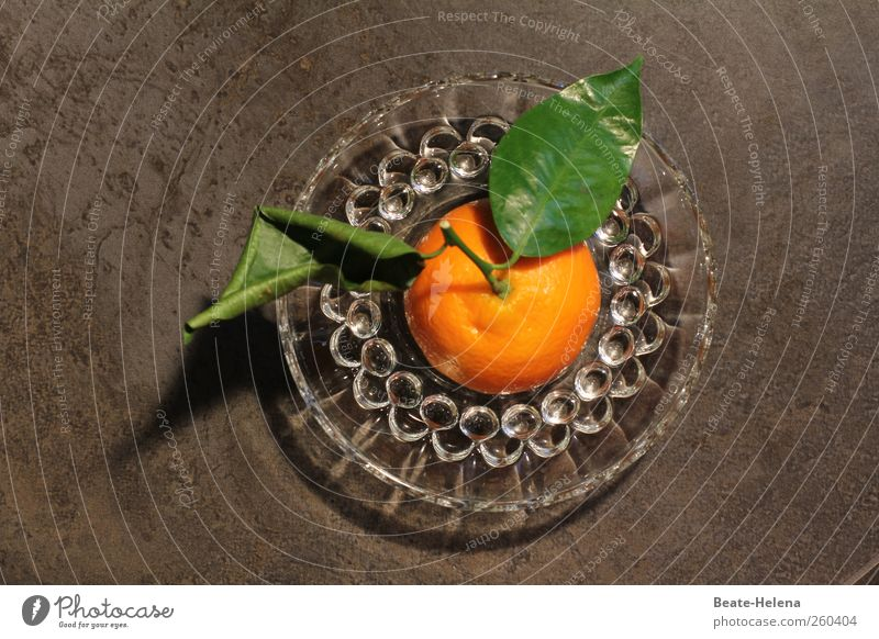 From the plantation directly to the plate Food Fruit Orange Dessert Nutrition Vegetarian diet Plate Glass Diet Select Esthetic Fragrance Fresh Sweet Gold Green