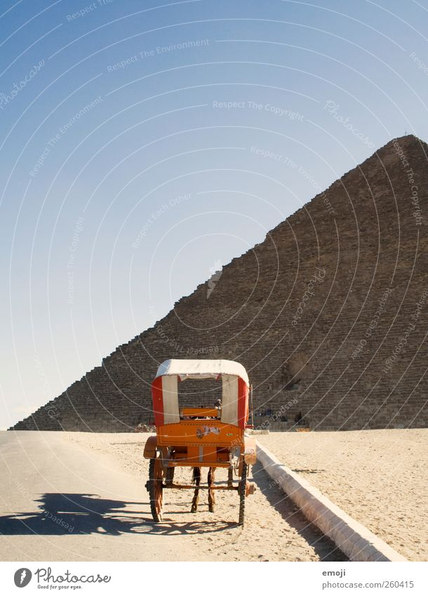 carriage with legs Environment Nature Landscape Sky Cloudless sky Drought Desert Animal Farm animal Horse 1 Exceptional Chauffeur Pyramid Colour photo