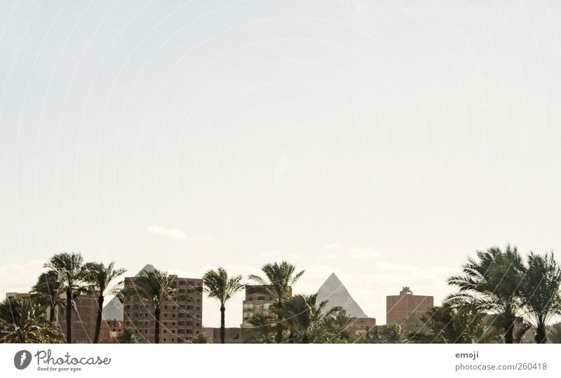 Nature City House (Residential Structure) Environment Landscape High-rise Exceptional Change Culture Manmade structures Historic Palm tree Capital city
