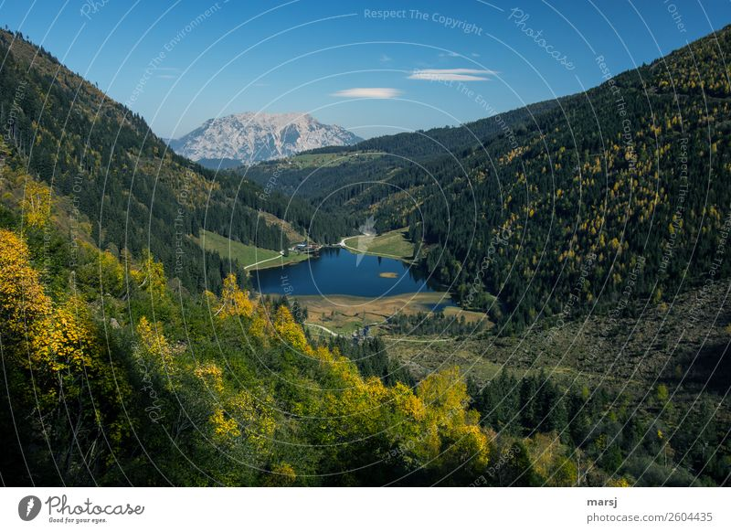 Autumn at Lake Constance in Styria Relaxation Calm Vacation & Travel Tourism Trip Far-off places Freedom Mountain Hiking Federal State of Styria Austria Nature