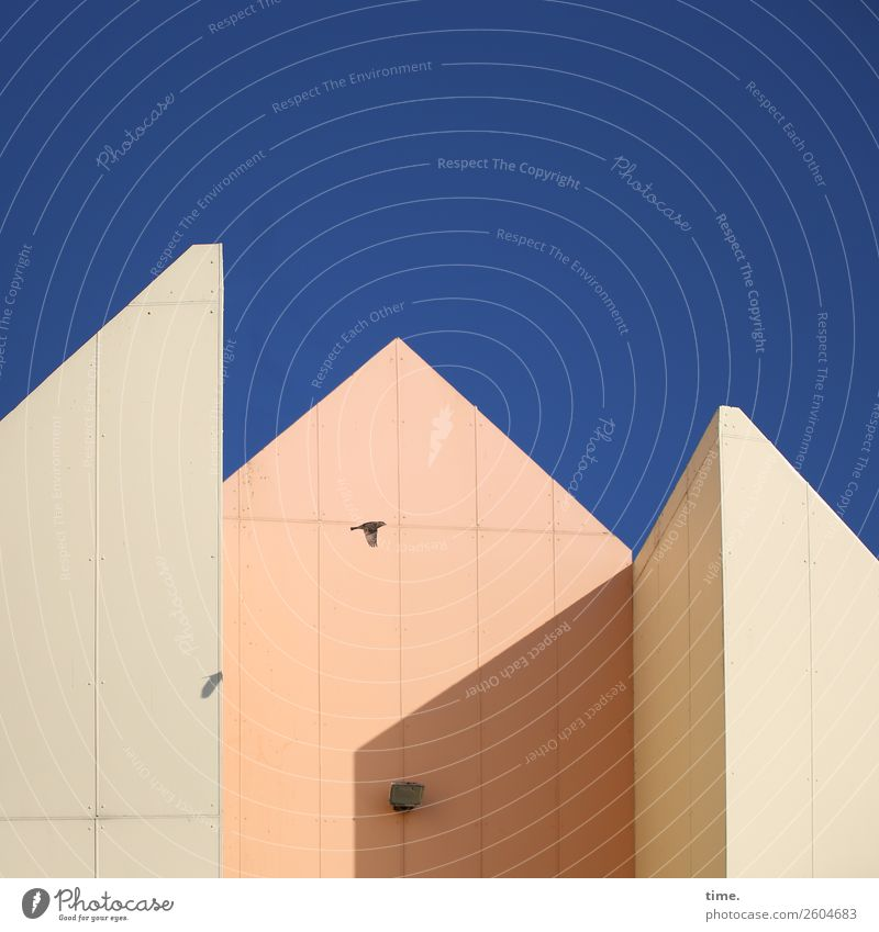 Concrete ensemble with tit and motion detector Sky only Beautiful weather House (Residential Structure) Manmade structures Building Architecture Pointed roof