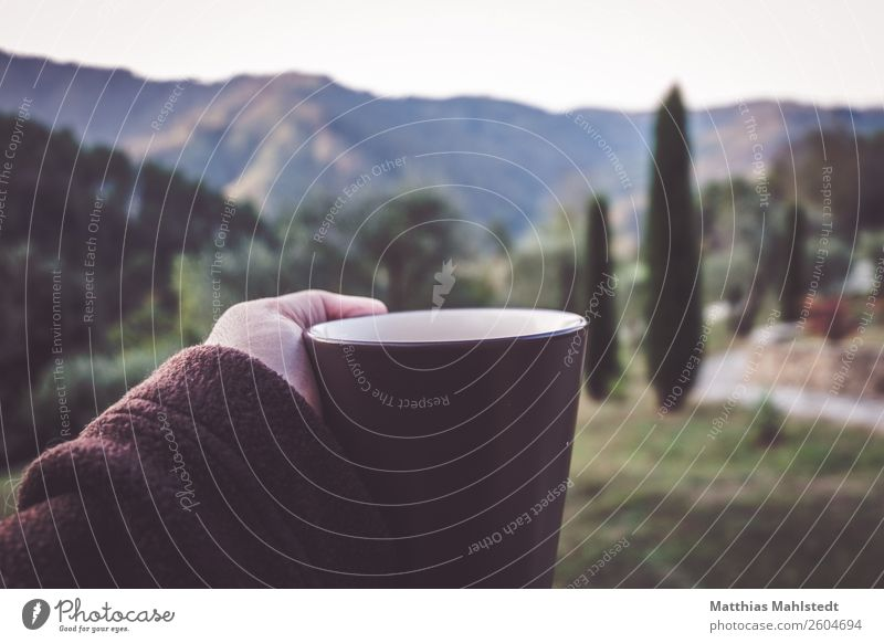 first coffee Beverage Coffee Arm Fingers Landscape Autumn cypress Mountain Tuscany Italy Cup Relaxation Drinking Healthy Natural Brown Green Contentment