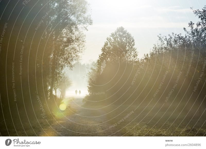 Hikers in the morning mist Nature Fitness Walking Life Beginning hiker sunbeams copy space dust field Glitter haze hiking landscape lane light Manure heap misty