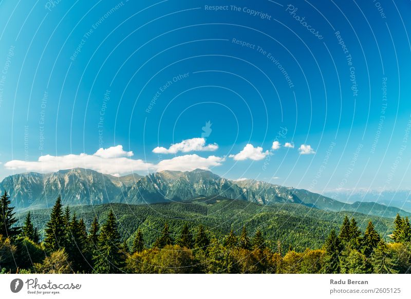Carpathian Mountains Landscape In Romania carpathian Beautiful Nature scenery Forest Panorama (Format) Sky Carpathians Green Vantage point Vacation & Travel