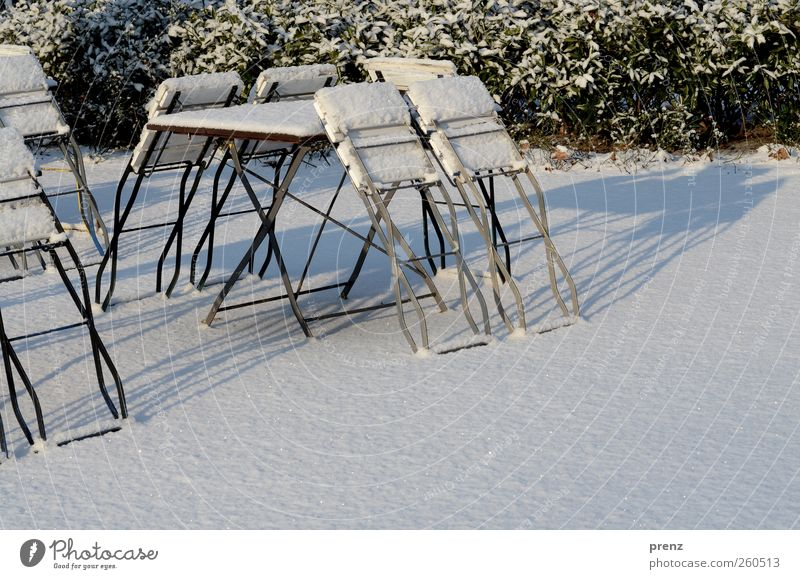 beer garden Ice Frost Snow Bushes Park Green White Winter Folding chair Chair Table Beer garden Colour photo Exterior shot Deserted Copy Space right Morning