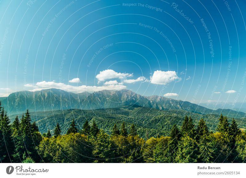 Carpathian Mountains Landscape In Romania Beautiful Nature Forest Panorama (Format) Sky