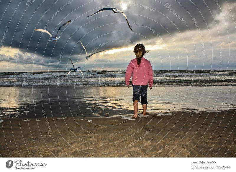 Human being Child Vacation & Travel Girl Summer Ocean Beach Animal Far-off places Life Freedom Coast Horizon Infancy Bird Wild animal