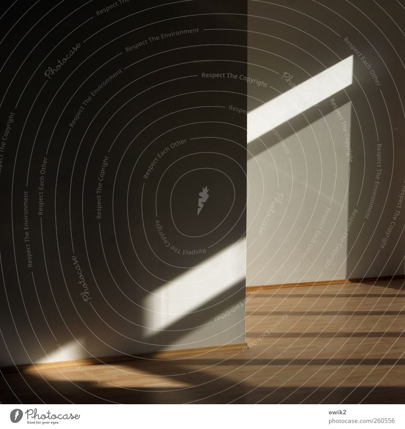 White Black Wall (building) Gray Wall (barrier) Bright Line Brown Room Interior design Modern Empty Floor covering Corner Moving (to change residence) Parallel