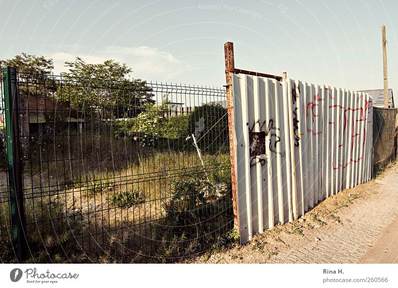 construction site Craft (trade) Construction site Grass Bushes Garden Small Town Chaos Fence Barrier Hoarding Corrugated iron wall Graffiti Colour photo