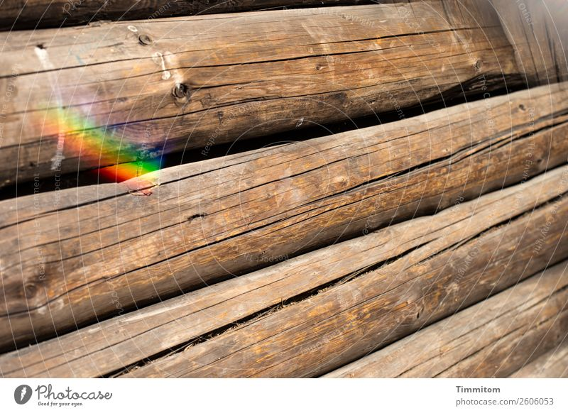 Log cabin, partial view Wooden hut Wall (barrier) Wall (building) Tree trunk Simple Brown Emotions Curiosity Prism Prismatic colour Crack & Rip & Tear