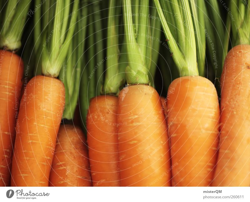 Green Food Art Orange Esthetic Many Vegetable Healthy Eating Stalk Harvest Delicious Carrot Thanksgiving Vitamin-rich