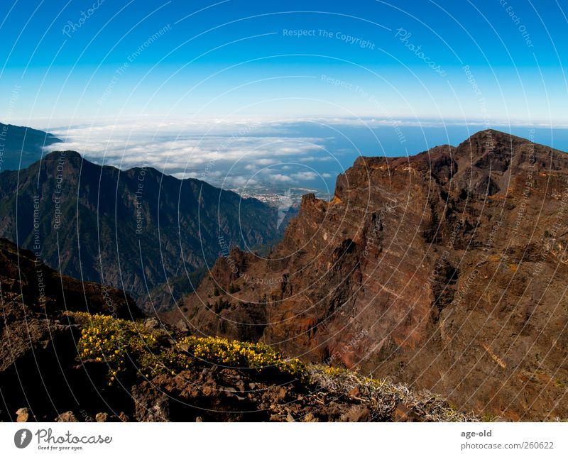 Oh, could I fly now... Adventure Far-off places Climbing Mountaineering Environment Nature Landscape Plant Sunlight Summer Beautiful weather Volcanic crater