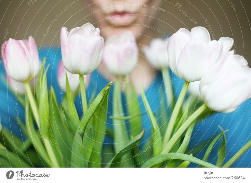 1 kiss and lots of flowers for you! Joy Flirt Valentine's Day Mother's Day Birthday Life Mouth Lips Human being Plant Spring Summer Flower Tulip Blossom Bouquet