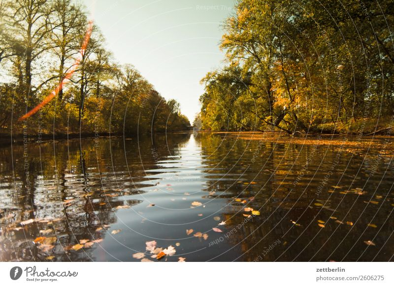 Old Berlin-Spandau shipping canal River Autumn leaves Channel Paddling Rowing Lake Current Pond Water Surface of water water migration spandau Navigation