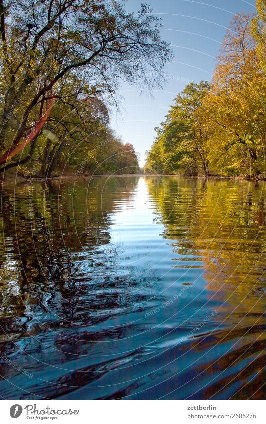 canal River Autumn leaves Channel Paddling Rowing Lake Current Pond Water Surface of water water migration Old Berlin-Spandau shipping canal spandau Navigation