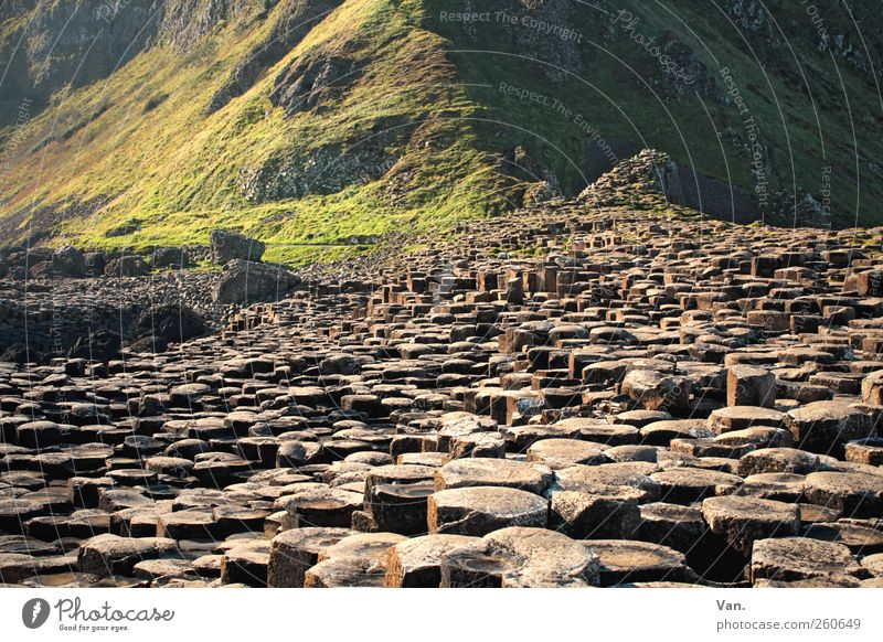 Giant's Causeway Environment Nature Landscape Earth Hill Rock Mountain Giant´s Causeway Northern Ireland Tourist Attraction Stone Exceptional Column Basalt