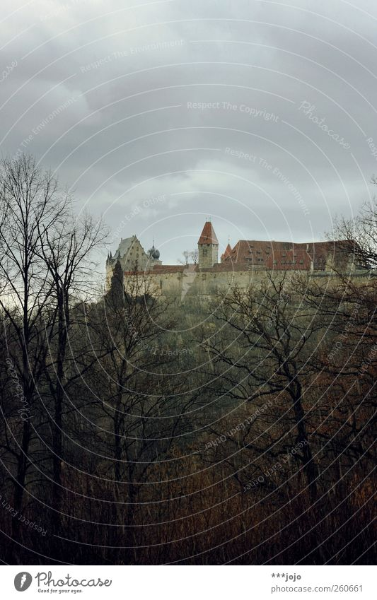 rainy skies. Historic Castle Coburg castle Medieval times Knight's castle Historic Buildings Fortress Forest Tree Dreary Rain Rainwater Gray Bad weather Winter