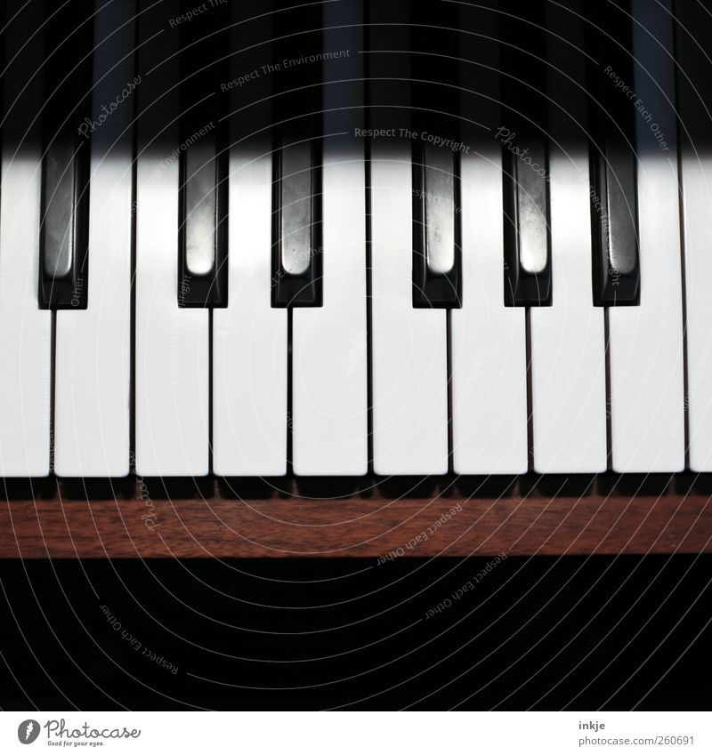 keyboard Leisure and hobbies Make music Music Piano Keyboard Tone octave Brown Black White Emotions Moody Virtuous Passion Self Control Diligent Disciplined