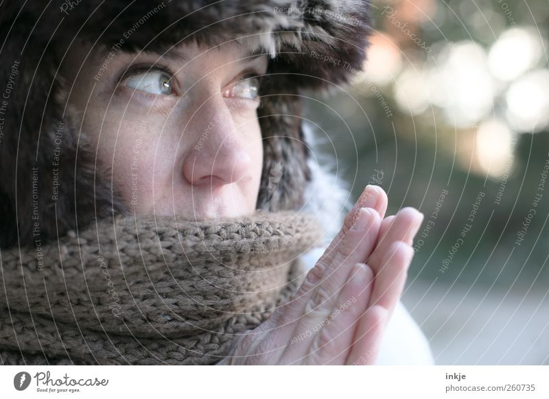 Human being Hand Winter Face Adults Life Cold Emotions Warmth Style Moody Ice Climate Lifestyle Frost Pelt
