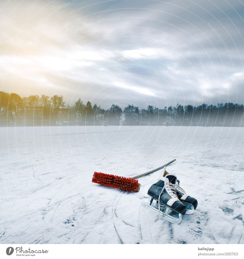 Sky Nature Water Sun Winter Clouds Environment Landscape Cold Snow Coast Lake Horizon Ice Fog Leisure and hobbies