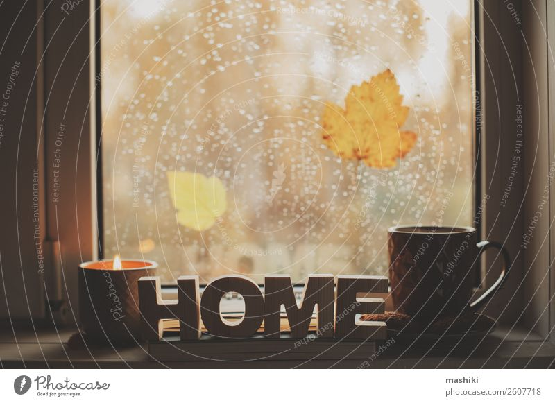cozy autumn morning at home. Hot tea and candle Coffee Tea Lifestyle Relaxation Reading Book Autumn Weather Rain Leaf Safety (feeling of) Comfortable cup window