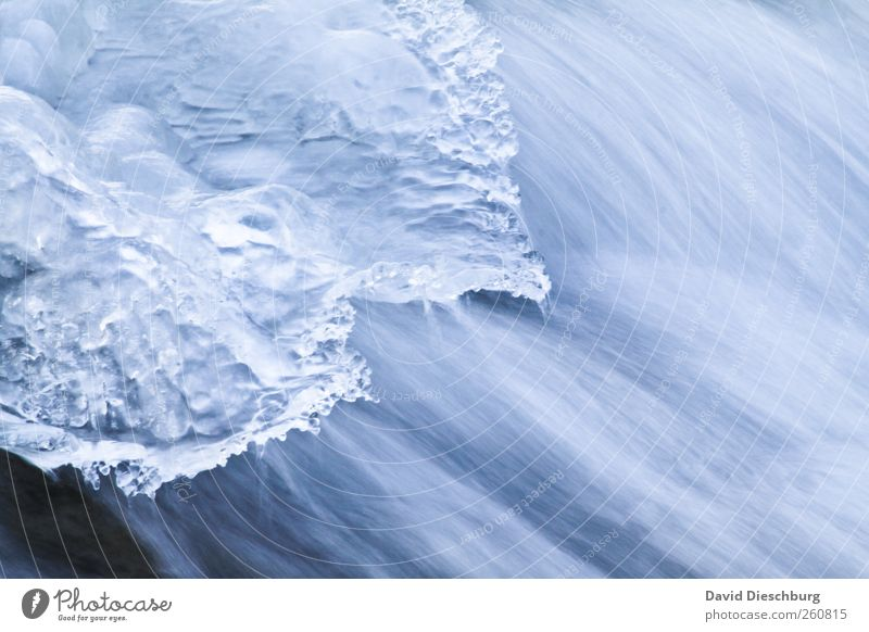 Ice vs. water Life Winter Nature Water Frost Brook River Waterfall Blue White Flow Winter's day Frozen Current Glittering Cold Cold shock Movement Colour photo
