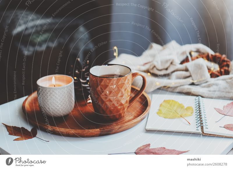 cozy autumn or winter morning at home. Breakfast Tea Lifestyle Relaxation Winter Table Book Landscape Autumn Leaf Wood Hot Natural Brown Safety (feeling of)