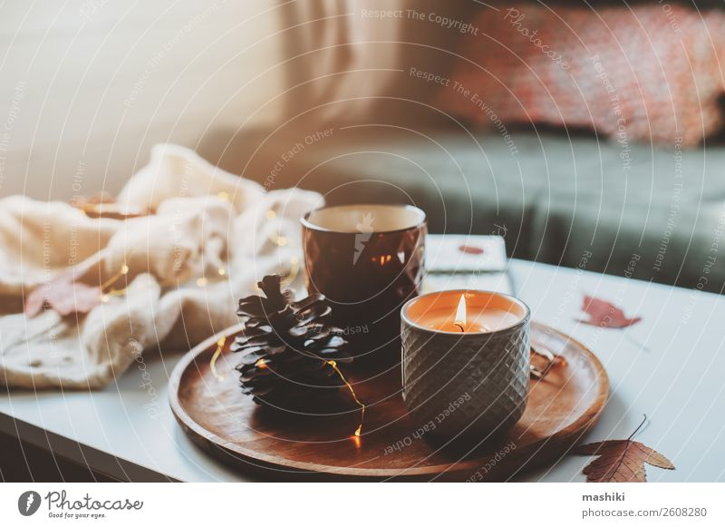 cozy autumn or winter morning at home. Breakfast Tea Lifestyle Relaxation Winter Decoration Table Book Landscape Autumn Wood Hot Natural Safety (feeling of)