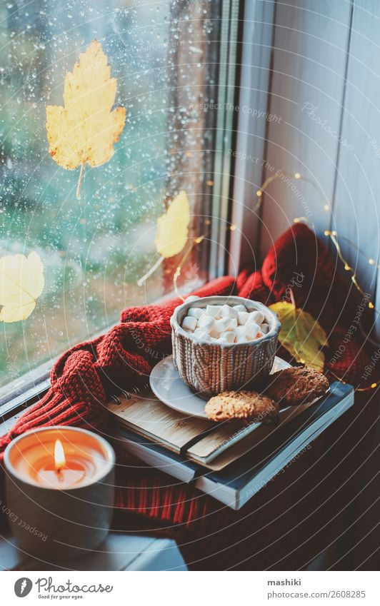 cozy autumn morning at home. Hot cocoa with marshmallows Breakfast Coffee Tea Lifestyle Relaxation Reading Autumn Weather Rain Leaf Safety (feeling of)