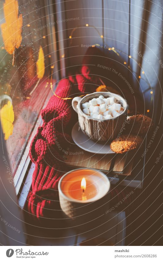 cozy autumn morning at home. Hot cocoa with marshmallows Breakfast Coffee Tea Lifestyle Relaxation Book Autumn Weather Rain Leaf Safety (feeling of) Comfortable