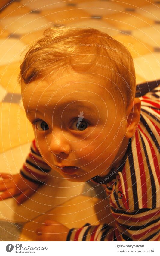 Child Boy (child) Head Warmth Small Sweet Floor covering Physics Tile Listening Cute Crawl