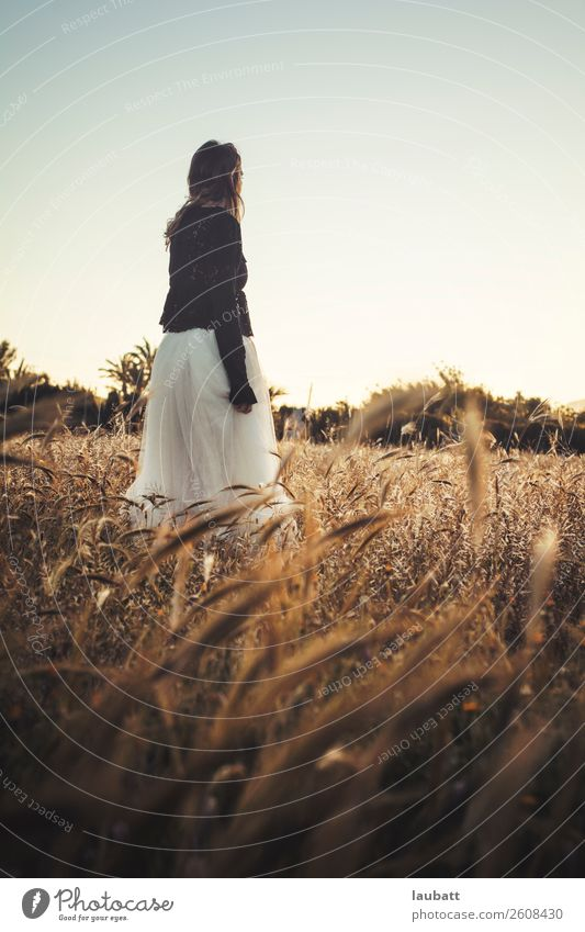 Portrait of a young, beautiful young woman looking to the horizon standing in the middle of a wheat field Woman Girl Young woman Wheat ear Freedom spikes