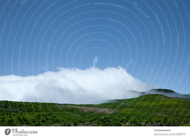 blanket of clouds Environment Landscape Elements Earth Air Sky Clouds Horizon Summer Weather Beautiful weather Hill Mountain Island Madeira Far-off places Large