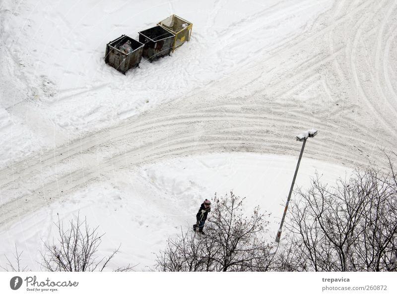 White City Tree Winter Calm Yellow Street Environment Snow Movement Gray Snowfall Moody Line Weather Going