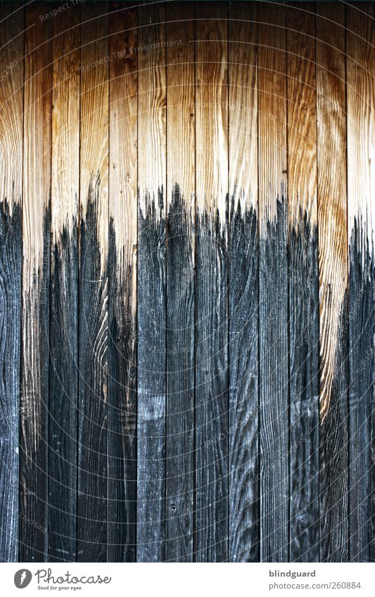 knock on wood Redecorate Wood Old Dark Firm Brown Structures and shapes Background picture Wood grain Paintwork Colour photo Exterior shot Deserted Long shot
