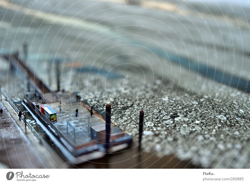 mini investor Water Winter Ice Frost River Elbe Hamburg Town Port City Harbour Navigation Inland navigation Ferry Cold Small White Tilt-Shift Miniature Jetty
