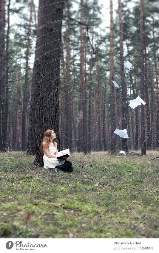 inspiration Young woman Youth (Young adults) 1 Human being 18 - 30 years Adults Painter Book Reading Nature Tree Grass Skirt Blonde Red-haired Piece of paper