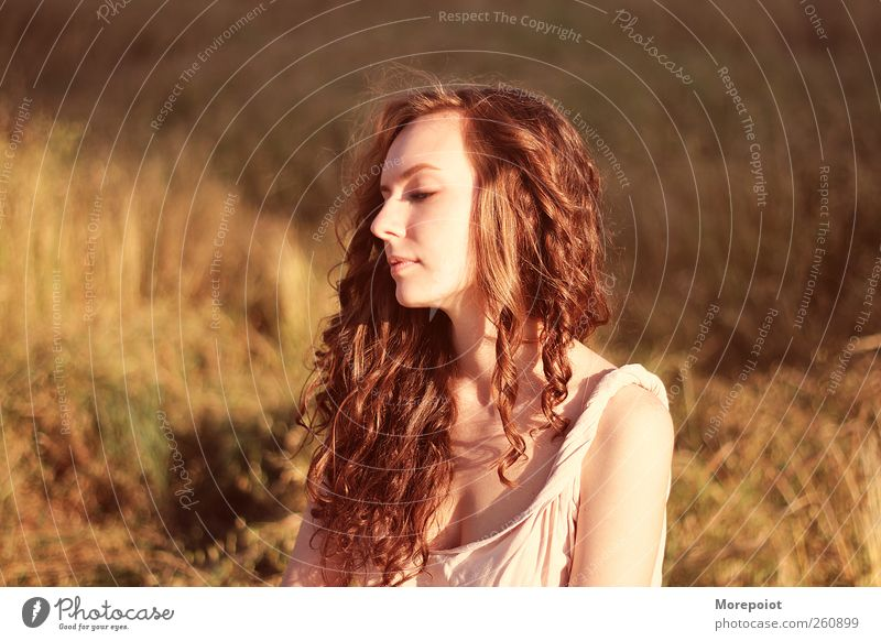 Beauty Human being Nature Youth (Young adults) Beautiful Sun Face Adults Feminine Autumn Grass Head Hair and hairstyles Dream Brown Field Gold