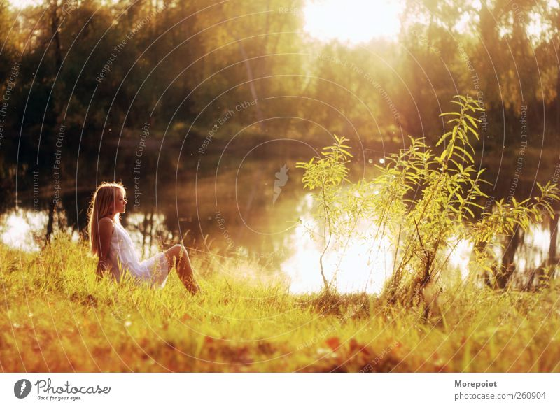 Sunset Feminine Young woman Youth (Young adults) Adults Body 1 Human being 18 - 30 years Nature Earth Water Sunrise Autumn Beautiful weather Tree Grass Forest